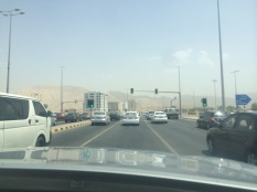 I only encountered in like 5 near death experiences thanks to Muscat traffic, but I made it out alive.